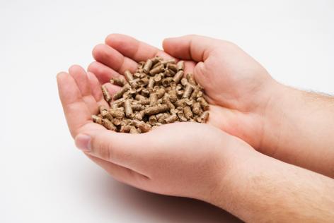rdf-pellets-biomass