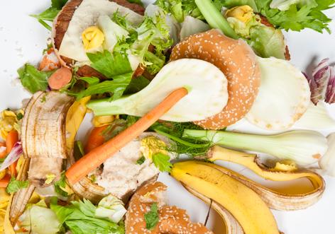food-waste-EU-commission