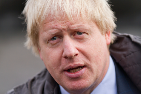 borsi-johnson