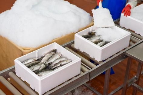 fish-packaging