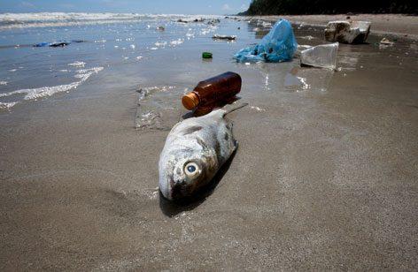 plastic-bag-beach