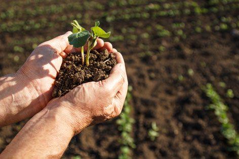 soil-treatment-fcc